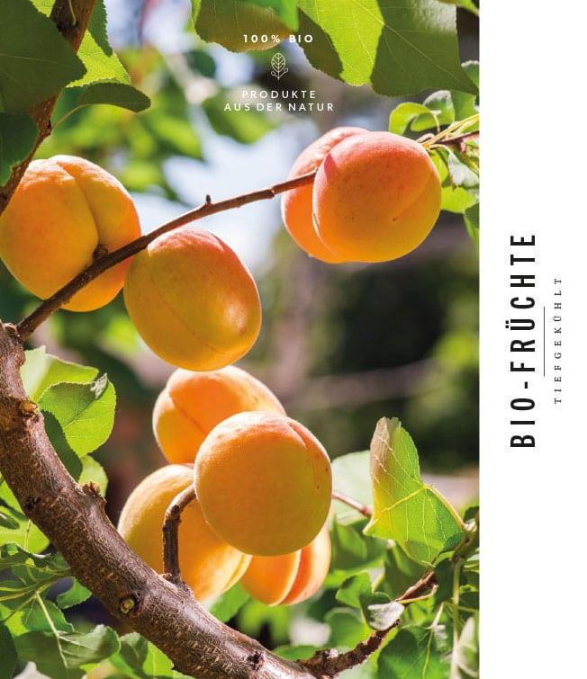 Biofrüchte – Obst Oswald Gleinstätten