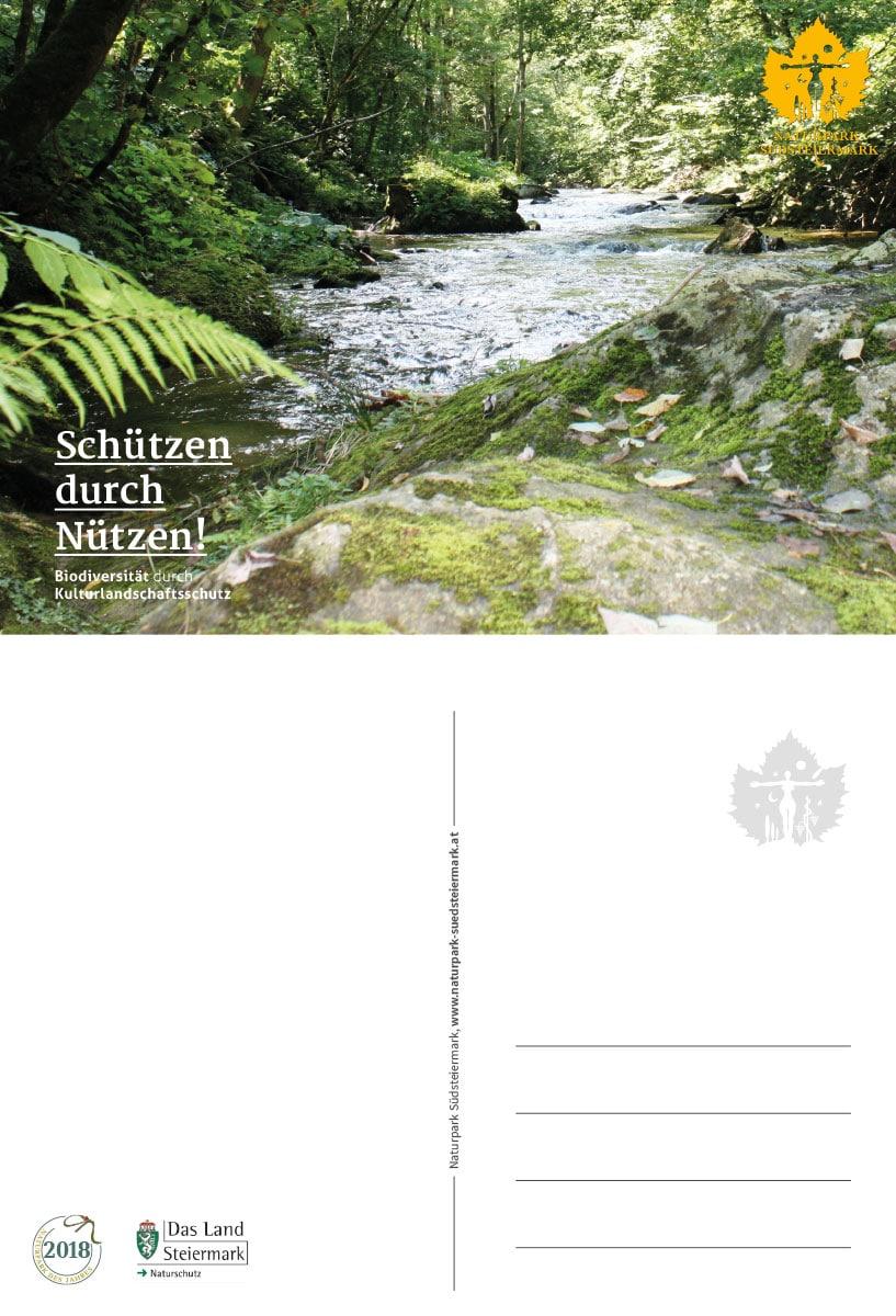Natupark Südsteiermark – Grafik, Logo, Design